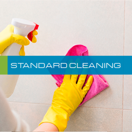07-STANDARD-CLEANING